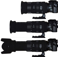 "Sigma 50-500mm ""Bigma"" Review"