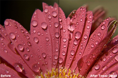 Save 30% on Topaz Detail or Suite
