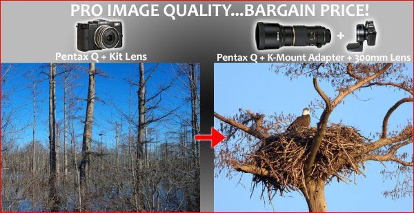 The True Power of the Pentax Q