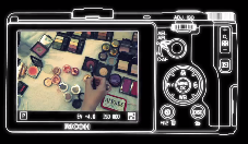 Ricoh GR LCD