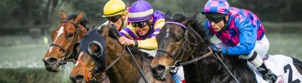 DSLR Guide for Shooting Sports II: Horse Racing
