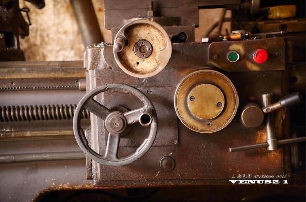 Venus Optics 60mm 2:1 Normal Sample 2