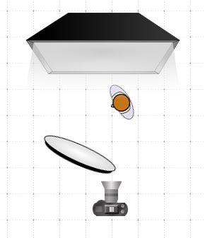 Softbox and reflector diagram
