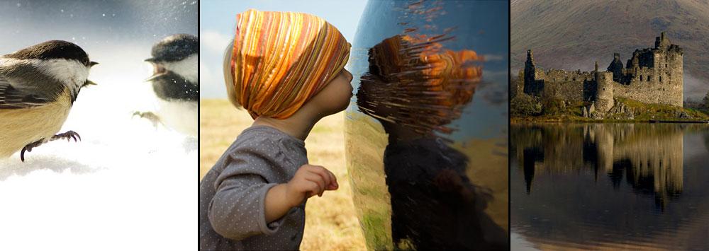 """Mirror Image"" Photo Contest Winners"