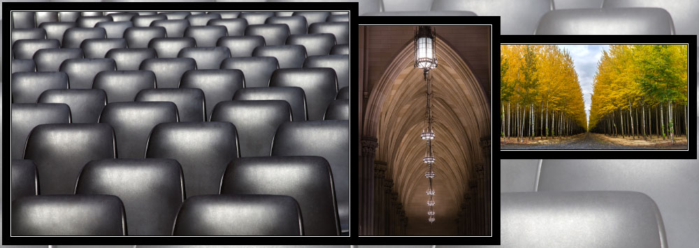 """Repeating Patterns"" Photo Contest Winners"
