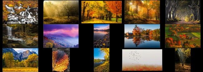 "November ""Fall Colors"" Contest Finalists Announced"