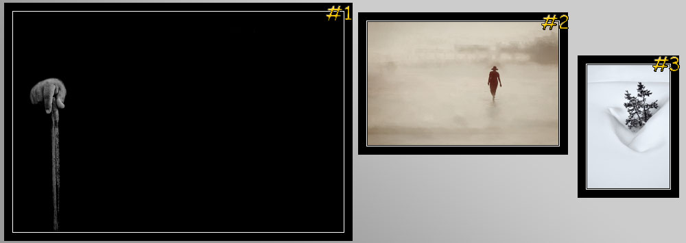 """""""Negative Space"""" Contest Winners"""