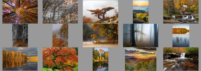 """November """"Fall Colors"""" Contest Finalists Announced"""
