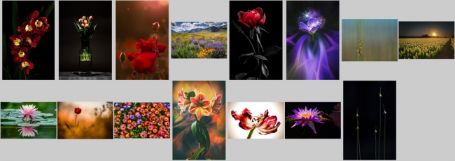 """May """"Flowers"""" Contest Finalists Announced"""