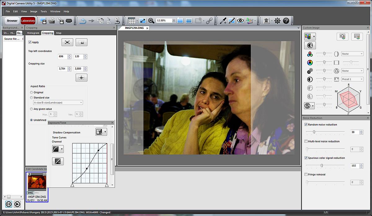 Screen cap of Ricoh's Digital Camera Utility