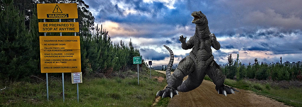 Part 3: How Godzilla stomped on my Lightroom habit