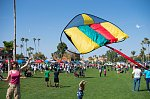 Spring Festival at Fountain Hills