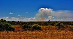 Isolated Rain Cloud-Kruger National Park