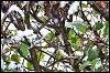 -20120117-imgp5179-edit-edit-2.jpg