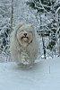 -kati-lumessa.jpg