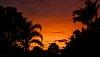 -sunrise-backyard.jpg