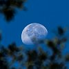 -waning-supermoon800.jpg