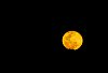 -super-moon-august-14.jpg