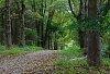 -hh-park-path-100714.jpg