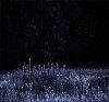 -5289_blue.jpg