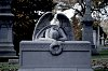 -weeping-angel-greenwood-3.jpg