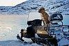 -2014-dec-07-landscape-puppy-guard-canoes-ice._2014-12-07_0082.jpg