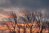 -weston-sunset-1.jpg