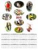 -2015-calendarweb.jpg