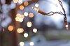 -holiday-lights-tn2.jpg