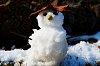 -snow-man.jpg