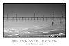 -surf-city-3.jpg