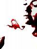 -crow6.jpg