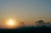-sunrise.jpg