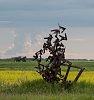 -field-art-5817.jpg