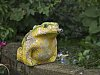 -frog.jpg