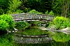 -reflection-wooden-arch-bridge.jpg