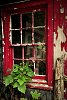 -scratchy-window-616rs-_img0906-1.jpg