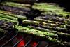 -asparagus.jpg