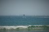-pelicandive1.jpg