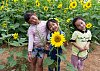 -little-girls-sunflowers.jpg