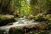 -riverfall2fb.jpg
