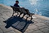 -shadow-bench.jpg