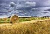 -hay-roll-1.jpg