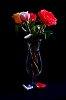 -still-life-flowers-petals.jpg