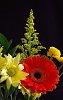 -bouquet-1.jpg