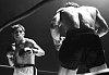 -bantamweight-fight-1.jpg
