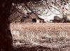 -barn-sepia-full-size-pp.jpg