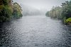 -erie-morning-mists.jpg
