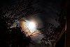 -moon-glow.jpg
