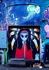 -indian-girl-street-art.jpg